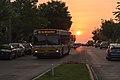 89 Bus from the Sun.jpg