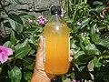 9896Barnes Naturals Apple Cider Vinegar 04.jpg