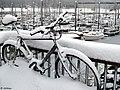 A Snow Bicycle (4260580525).jpg