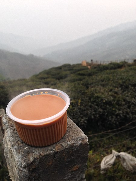 File:A cup of tea on Darjeeling tea fields.jpg