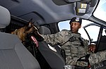 A dog and his handler, a working relationship 160614-F-SO188-183.jpg
