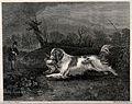 A hunting dog retrieving a fowl to the huntsman standing in Wellcome V0021837.jpg