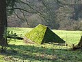 A mossy barn - geograph.org.uk - 311473.jpg