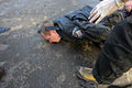 A police officer lying on the ground beaten seen during clashes in Ukraine, Kyiv. Events of February 18, 2014.jpg