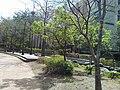 A sunny day at Sangam-dong,Seoul.jpg