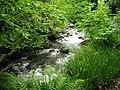 Abhainn Greadhain at South Ballachulish - geograph.org.uk - 1389897.jpg