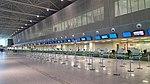 Aeroporto São Gonçalo guichês.jpg