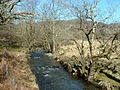 Afon Artro - geograph.org.uk - 146975.jpg