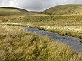 Afon Elan above Glanhirin farm bridge - geograph.org.uk - 1528718.jpg