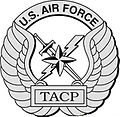 Air Force TACP Badge.jpg