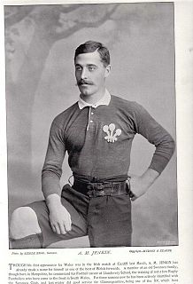 Albert Jenkin English rugby union player