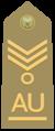 Allievo ufficiale capo scelto di reggimento of the Italian Army.png