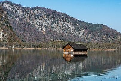 Almsee Wanderweg Ostufer Fischerhütte-4164.jpg