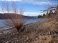 Along the Shore of Okanagan Lake - Lake Country - BC - Canada - 03 (8540388911).jpg