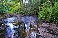 Alovės upelis.JPG