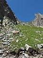 Alpine Ibex (Bouquetin) @ Path from L'Index to Col de la Gliere @ Hike to Lacs des Chéserys, Lac Blanc, Lac Cornu & Lacs Noirs @ Chamonix (15358316021).jpg