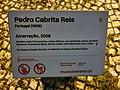 Amarração Pedro Cabrita Reis 07.jpg