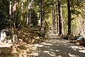 Amida-ji (Hakone) 09.jpg