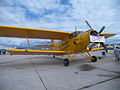 Antonov AN-2 Colt Yellow.jpg
