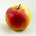 Apfel-Gala.jpg