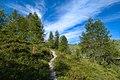 Arosa - trail 10.jpg