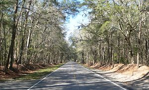 National Register of Historic Places listings in Charleston County, South Carolina - Image: Ashley River Road 1.8 mi N of Bees Ferry Rd