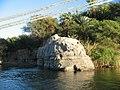 Aswan - panoramio (3).jpg