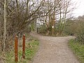 Attenborough Nature Reserve Paths - geograph.org.uk - 1098479.jpg