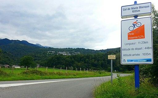 Au pied du col de Marie-Blanque, vue sur Bilhères - panoramio