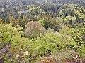 Ausblick vom Albtraufgängerweg beim Hörnle 956 m ü. NN - panoramio (6).jpg