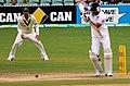 Australia v England (2nd Test, Adelaide Oval, 2013-14) (11287494745).jpg