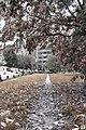 Autumn (51322858).jpeg