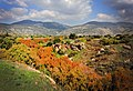 Autumn in the Banias סתיו בבניאס.jpg