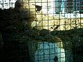 AzulejosParaEntulhoSSabas2.jpg