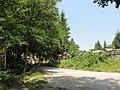 Băile Olăneşti - panoramio (12).jpg