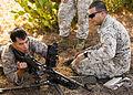 Back to Basics, Infantrymen sharpen skills in Spain 150805-M-QL632-011.jpg