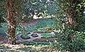 Bad-homburg-schlosspark-steinbruch-003.jpg