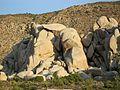 Balancing rock at Ryan Mountain Trailhead.jpg