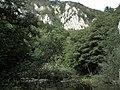 Banat,Nera Canyon - panoramio (28).jpg