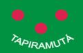 Bandeira tapiramuta.png