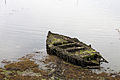 Barca afundida no Carril- Vilagarcía de Arousa- Galiza - 2.jpg