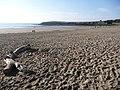 Barry Island, Whitmore Bay sands - geograph.org.uk - 1186984.jpg