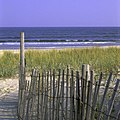 Beach at Chincoteague National Wildlife Refuge (VA) (4566391128).jpg