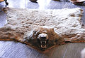 Bearskin-rug.jpg
