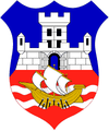 Belgrade Coat of Arms differrent colors.png
