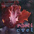 Beneški fantje - Rdeči cvet.jpg