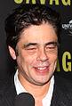 Benicio Del Toro (8073587319) (cropped).jpg