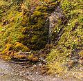 Bergtocht van Vens naar Bettex in Valle d'Aosta (Italië) 019.jpg