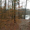 Berlin-Reinickendorf Landschaftsschutzgebiet Waldgelände Frohnau Hubertussee.jpg