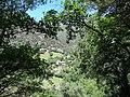 Besan (juny 2013) - panoramio.jpg
